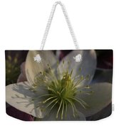 Light And Shadow Hellebore Flower Weekender Tote Bag
