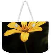 Light From Darkness Weekender Tote Bag