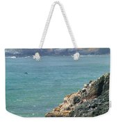 Light House And Sea Lions Weekender Tote Bag