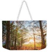 Light In The Cypress Trees II Weekender Tote Bag