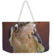 Light Morph Immature Swainsons Hawk Weekender Tote Bag