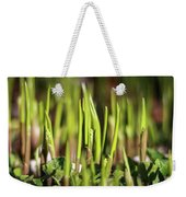 Light Of Spring Weekender Tote Bag