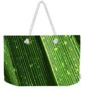 Light Shining Through Palm Frond Weekender Tote Bag