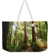 Light The Way - Redwood Forest Of Muir Woods National Monument With Sun Beam. Weekender Tote Bag