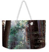 Lighting The Path Weekender Tote Bag