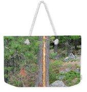 Lightning Strike On Tree Weekender Tote Bag