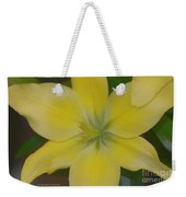 Lilly With Artistic Beauty Weekender Tote Bag