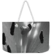 Lily - American Cheerleader 28 - Bw - Water Paper Weekender Tote Bag