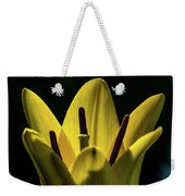 Lily And Sunshine Weekender Tote Bag