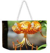 Lily Flowers Art Orange Tiger Lilies Giclee Baslee Troutman Weekender Tote Bag