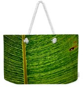 Lincoln Park Conservatory Palm Weekender Tote Bag