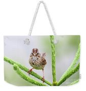 Lincoln's Sparrow Weekender Tote Bag
