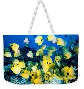 Lined Butterflyfish Weekender Tote Bag