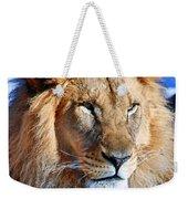 Lion 09 Weekender Tote Bag