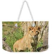 Lion Cub 2 Weekender Tote Bag