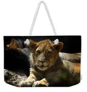 Lion Cub Weekender Tote Bag