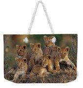 Lion Cubs Weekender Tote Bag