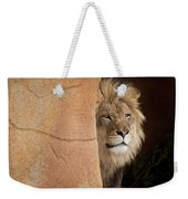 Lion Emerging    Captive Weekender Tote Bag