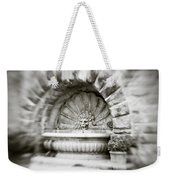 Lion Head Fountain Weekender Tote Bag