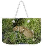 Lion In A Cool Glade Weekender Tote Bag