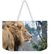 Lion In Thought Weekender Tote Bag