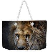 Lion Portraits 0055 Weekender Tote Bag