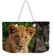 Lioness Cub Weekender Tote Bag