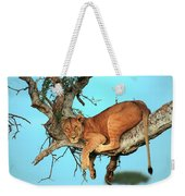 Lioness In Africa Weekender Tote Bag