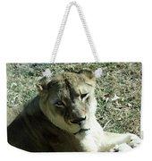Lioness Peering Weekender Tote Bag