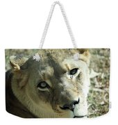 Lioness Up Close Weekender Tote Bag
