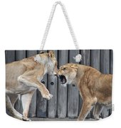 Lioness's Playing 1 Weekender Tote Bag