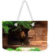 Lions And Tigers And...no Just A Lion Weekender Tote Bag