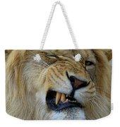 Lions Wink Weekender Tote Bag
