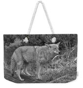Listening Intently Closeup Black And White Weekender Tote Bag