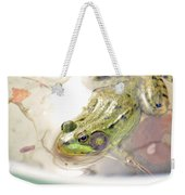 Lithobates Catesbeianus Or Rana Catesbeiana Weekender Tote Bag