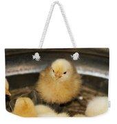 Little Baby Peep Weekender Tote Bag