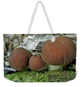 Little Brown Mushrooms In Moss Weekender Tote Bag