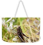Little Grasshopper 2 Weekender Tote Bag
