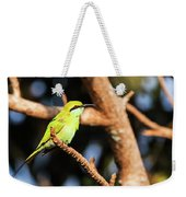 Little Green Bee Eater On A Branch Weekender Tote Bag