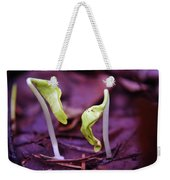 Little Green Sprouts  Weekender Tote Bag