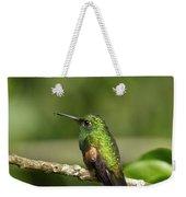Little Hummingbird Weekender Tote Bag