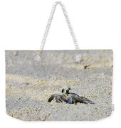 Little Nag's Head Crab Weekender Tote Bag