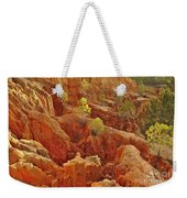 Little Pine Trees Growing On The Valley Cliffs Weekender Tote Bag