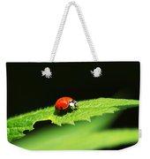 Little Red Ladybug On Green Leaf Weekender Tote Bag by Christina Rollo