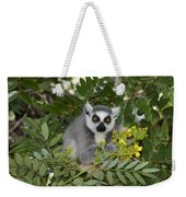 Little Ring-tailed Lemur Weekender Tote Bag