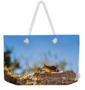 Little Squirrel Weekender Tote Bag