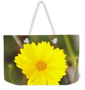 Little Sun Weekender Tote Bag