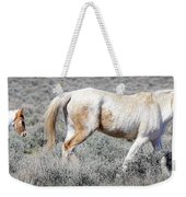 Little Tail Gater Weekender Tote Bag