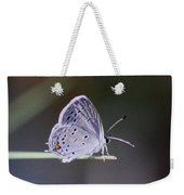 Little Teeny - Butterfly Weekender Tote Bag