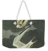 Little Tern Weekender Tote Bag
